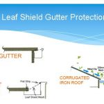 Real Facts About Leaf Protection